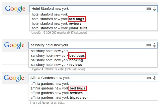 bed bugs a search problem for new york hotels media culpa